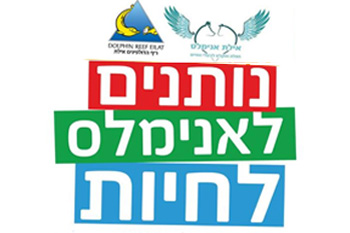 Eilat Animal Rescue Fundraising Event