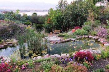 הגן הבוטני