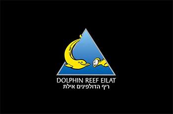 בר חוף ריף הדולפינים