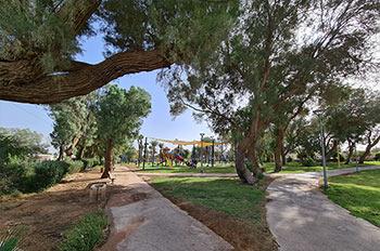 פארק פרדקין