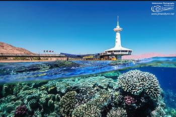 Underwater Observatory Park