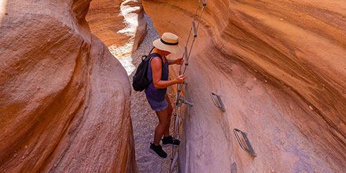 10 visites guidées les plus recommandées à Eilat